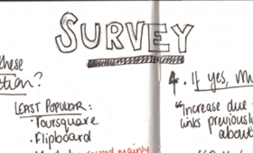 Analysing our Survey